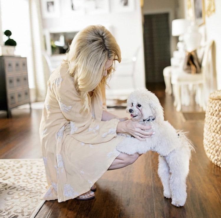 Preparing Dog for Baby